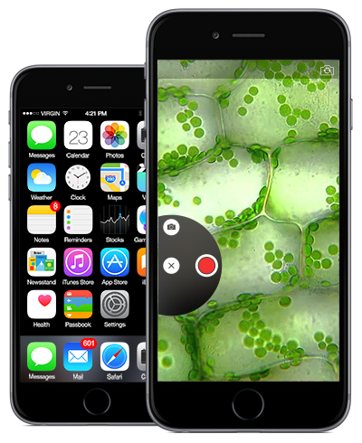 iphone6-microscopic